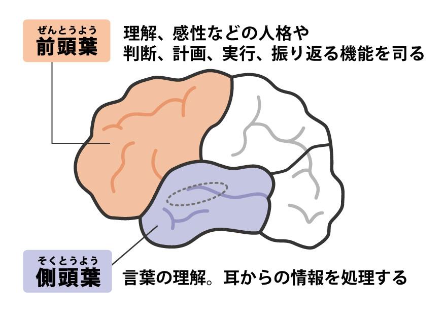 前頭 側 頭 型 認知 症 前頭側頭型認知症(FTD)とは 認知症ねっと
